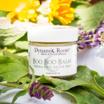 """Kate Miller<br> Dynamic Roots High Altitude Herbals<br> Botanical  bodycare products, extracts and syrups<br>  <a href=""""http://www.dynamicroots.com"""" target=""""_blank"""">www.dynamic roots.com</a>"""