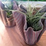 William HaggertyAll Its OwnSucculents, airplants and terraria in creative displays www.etsy.com/shop/allitsown