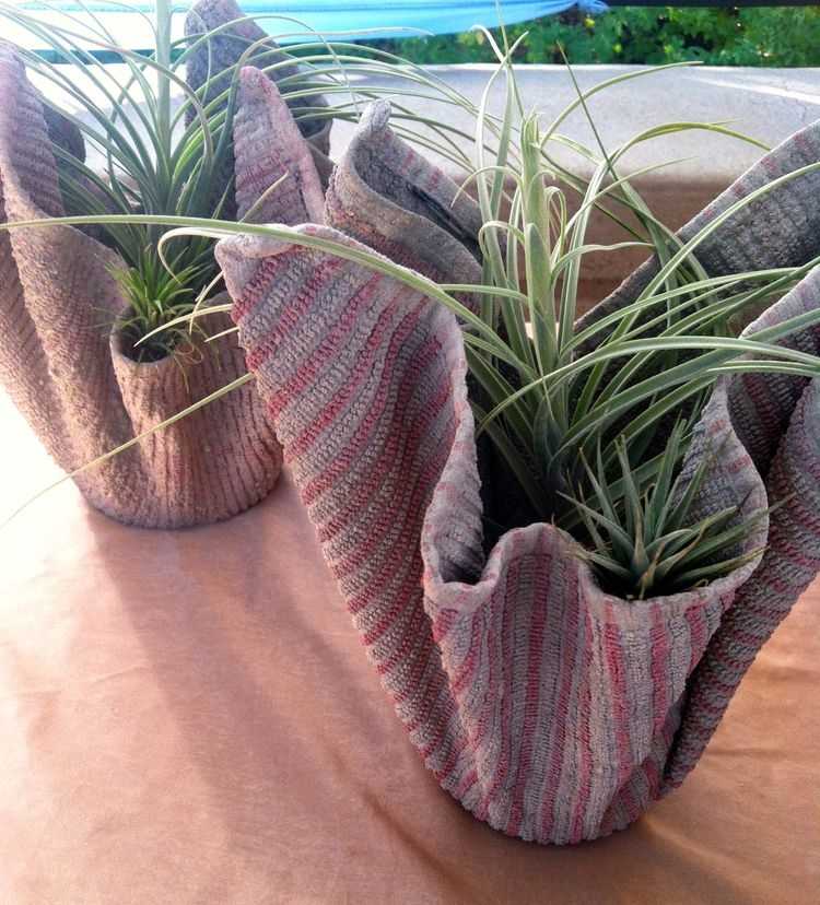 """William Haggerty<br>All Its Own<br>Succulents, airplants and terraria in creative displays <br><a href=""""https://www.etsy.com/shop/allitsown"""" target=""""_blank"""">www.etsy.com/shop/allitsown</a>"""